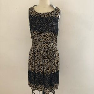 Leopard/Cheetah Print and Lace Dress